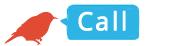 CallUsBird-InTheCityCamp-3